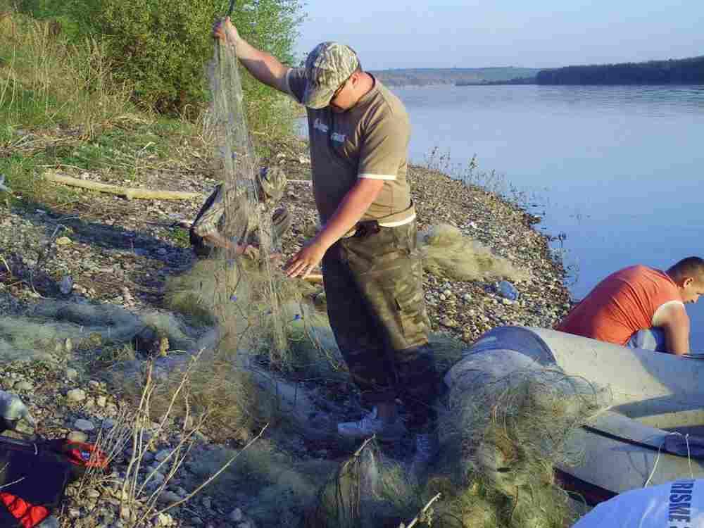 рыбалка с сетками