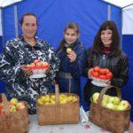 Хороши яблоки и груши из деревни Курба!